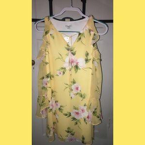 Long Sleeve Dress (Extra Small)
